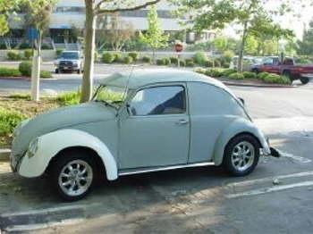 My little VW0029