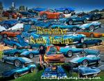 11th Annual Berry Cool Car Show2