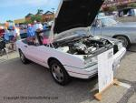 17th Annual Cruise for the Cure Car Show33