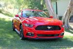 2015 Mustang Publicity0