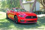 2015 Mustang Publicity24