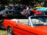 26th Annual Chili Cook Off and Car Show3