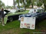 29th Annual Fords and Friends Picnic1