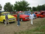 29th Annual Fords and Friends Picnic25