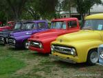 29th Annual Fords and Friends Picnic26