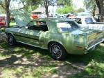 31st Annual Ford & Friends Car Show12