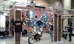42nd Annual Birmingham O'Reilly World of Wheels1