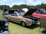 Ammon Blueberry Festival Antique and Classic Car and Truck Cruise-In29