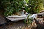 Big M Antique Auto Dismantling 10th annul Pig BBQ 35