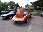 Cheviot Classic Car Show14
