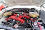 Classic Car Show11