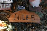 Hot August Niles Car Show0