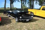 Manton Labor Day Weekend Car Show103