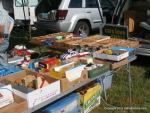 Motorama Car Show and Flea Market6