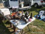 Motorama Car Show and Flea Market10