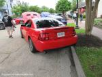 Mustang Round-Up5