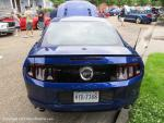 Mustang Round-Up9