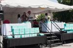 Palo Alto Concours d'Elegance San Mateo, CA June 30, 20136