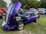 ROCKIN'& ROLLIN' to the RED, WHITE, & BLUE CAR SHOW24