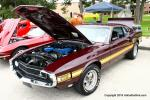 22nd Annual Tomball Lions Club Car Show0