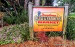 Daytona Flea Market 60