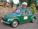 LuAnn's Apple Festival and Classic Car Show0
