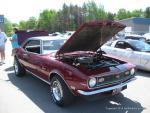 Manistee Ford's 5th annual Breast Cancer Benefit Car Show 20140