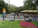 Ventura Vintage Rods Family & Friends Picnic1